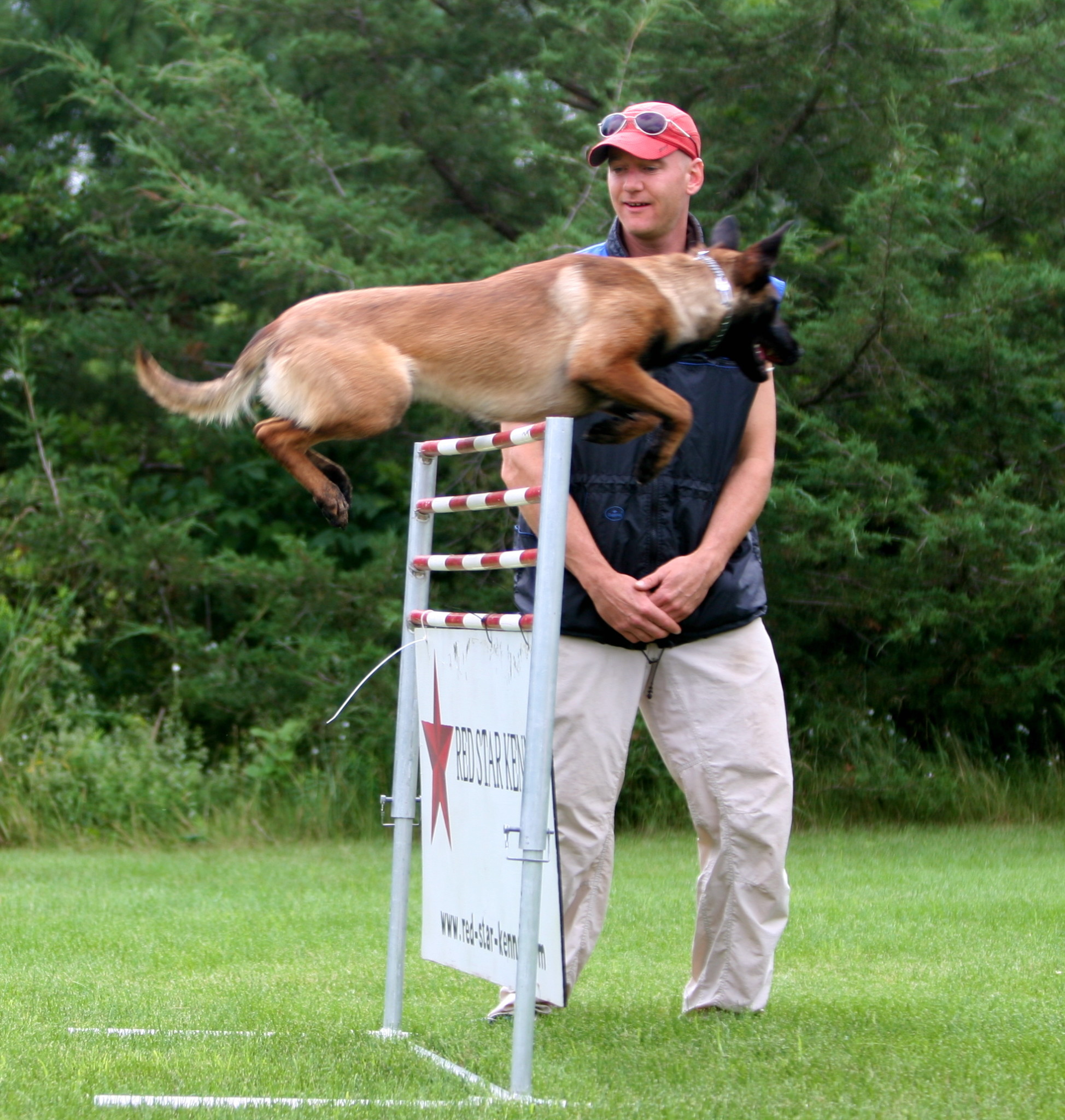 How compartmentalization creates perfection in dog training