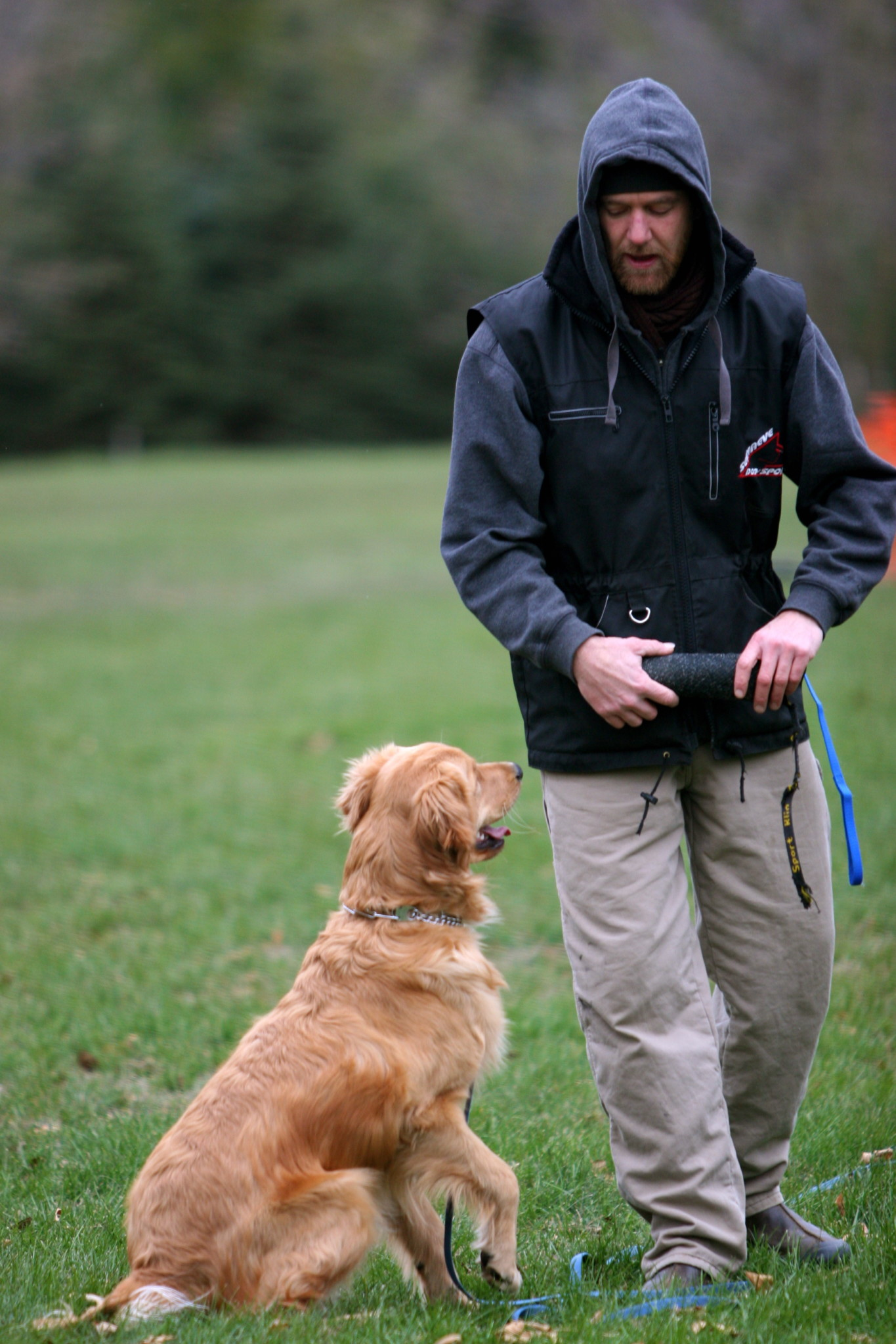 The finest Dog Training in Hudson, WI